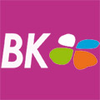 BK CONSULTING FRANCE